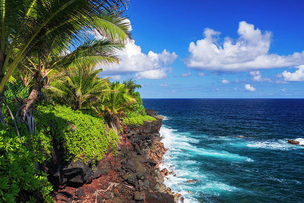 Wall Art - Photograph - Surf And Palms Along The Puna Coast by Russ Bishop