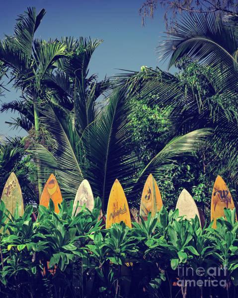 Wall Art - Photograph - Surf Board Fence Maui Hawaii by Edward Fielding