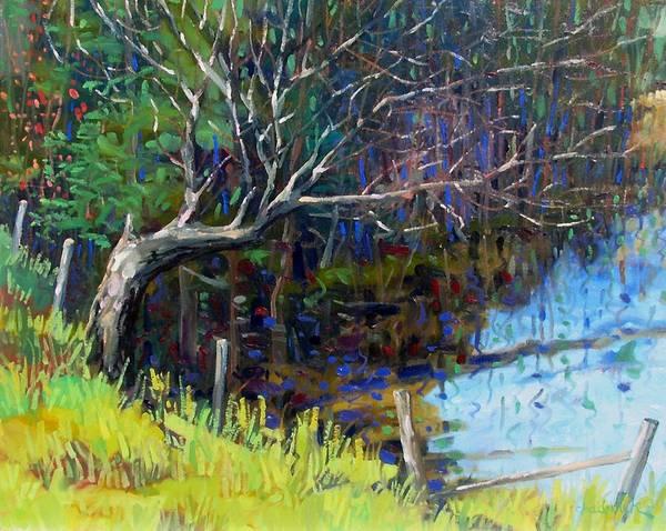 Plein Air Photograph - Swamp Tree by Phil Chadwick