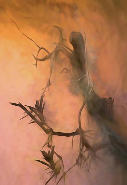Mixed Media - Swamp Woman by Rosalie Scanlon