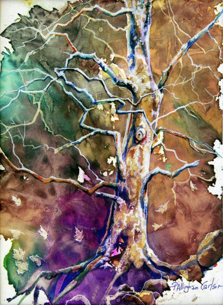 Sycamore Painting - Sycamore Tree by Patricia Allingham Carlson