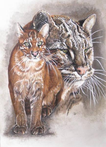 Mixed Media - Temmincks Cat by Barbara Keith