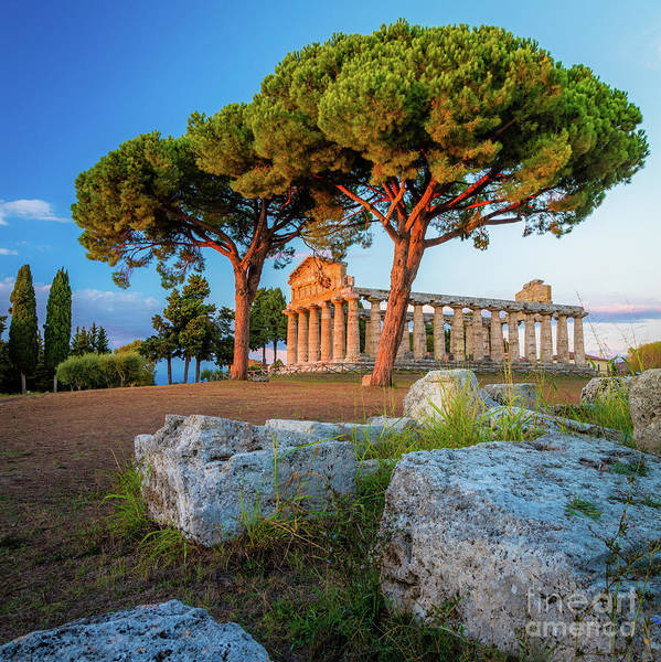 Wall Art - Photograph - Temple Of Athena Columns by Inge Johnsson