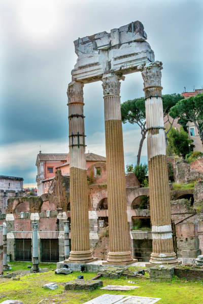 Wall Art - Photograph - Temple Of Vespasian And Titus by William Perry