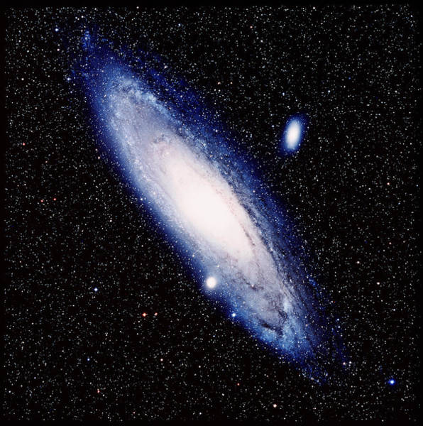 Celestial Object Photograph - The Andromeda Galaxy by Celestial Image Picture Co.