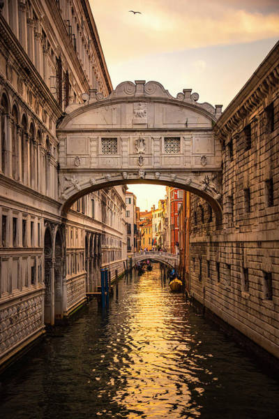 Wall Art - Photograph - The Bridge Of Sighs by Svetlana Sewell