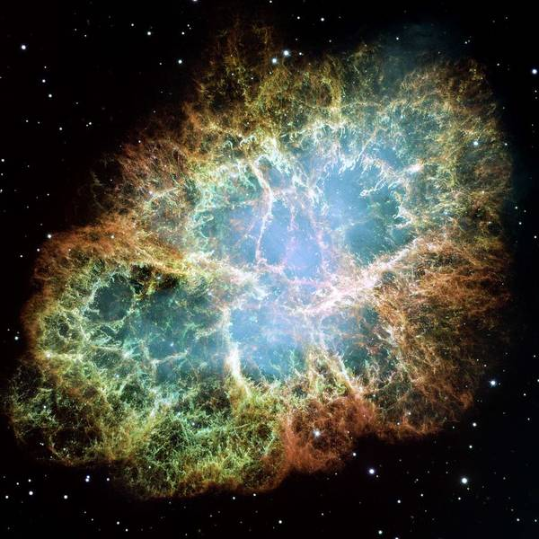 Wall Art - Painting - The Crab Nebula by Celestial Images