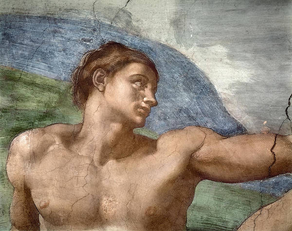 The Creation Of Adam Wall Art - Painting - The Creation Of Adam, Detail Of Adam's Head, 1508-12 by Michelangelo Buonarroti