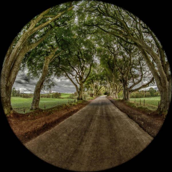 Photograph - The Dark Hedges by Chris Cousins