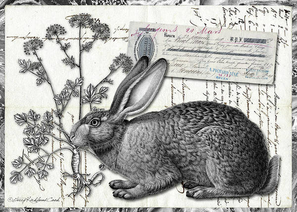 Digital Art - The English Hare by Terry Kirkland Cook