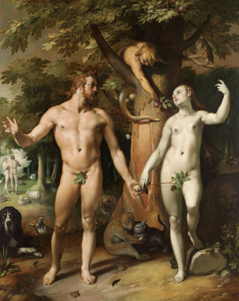 The Creation Of Adam Wall Art - Painting - The Fall Of Man, 1592 by Cornelis van Haarlem