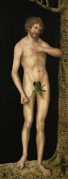 The Creation Of Adam Wall Art - Painting - The Fall Of Man - Adam And Eve by Lucas Cranach the Elder