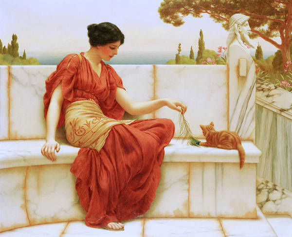 Kitten Play Wall Art - Painting - The Favorite by John William Godward