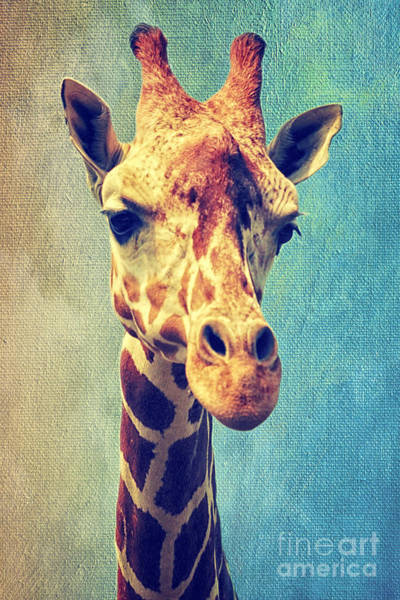 Mixed Media - The Giraffe by Angela Doelling AD DESIGN Photo and PhotoArt