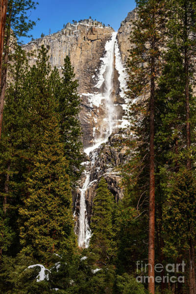 Wall Art - Photograph - The Iconic Yosemite Falls In The Winter. by Jamie Pham