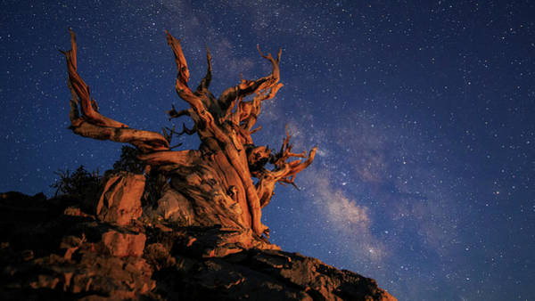 Photograph - The Milky Way Above An Ancient by Jeff Dai