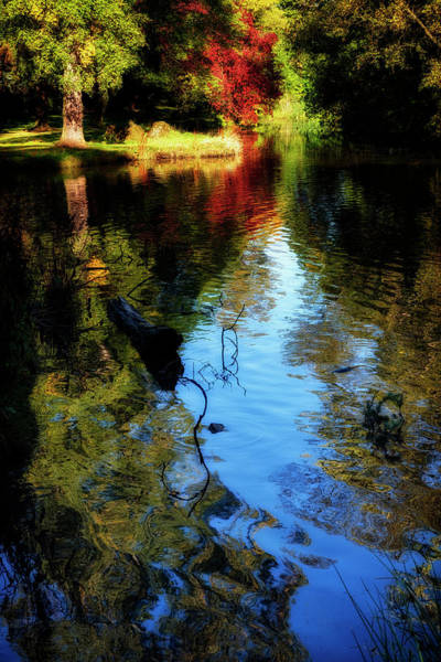 Photograph - The Pond At Inglewood House by Jeremy Lavender Photography