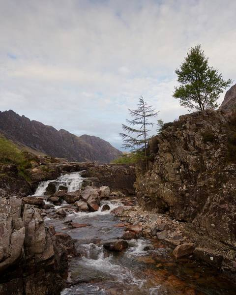 Photograph - The River Coe by Stephen Taylor
