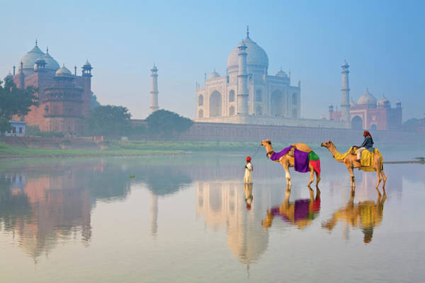 Sunny Side Up Wall Art - Photograph - The Taj Mahal, Agra, Uttar Pradesh by Douglas Pearson