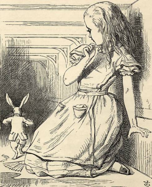 Wall Art - Painting - The White Rabbit Is Late  From  Alice S Adventures In Wonderland  By Lewis Carroll  by John Tenniel