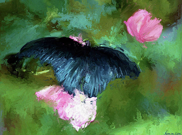 Digital Art - The Wings Of Night by Rein Nomm