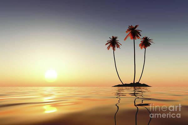 Wall Art - Photograph - Three Palms by Aleksey Tugolukov