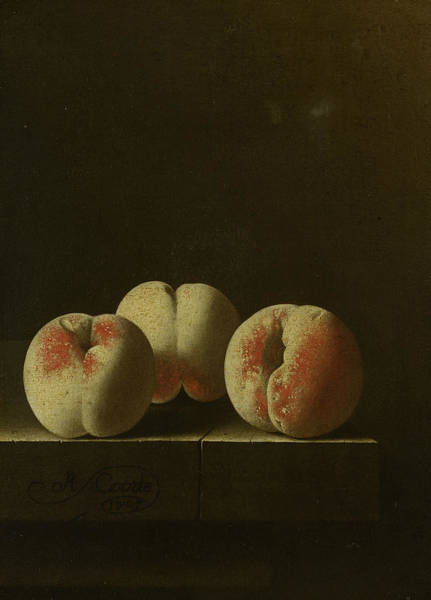 Painting - Three Peaches On A Stone Plinth by Adriaen Coorte