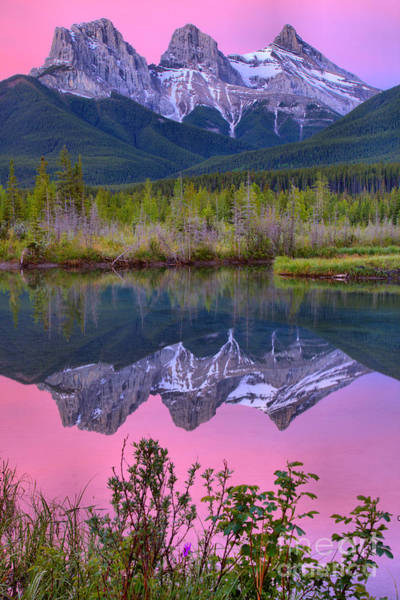 Photograph - Three Sisters Sunrise Spring Portrait by Adam Jewell