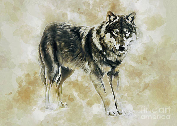 Digital Art - Timber Wolf by Ian Mitchell