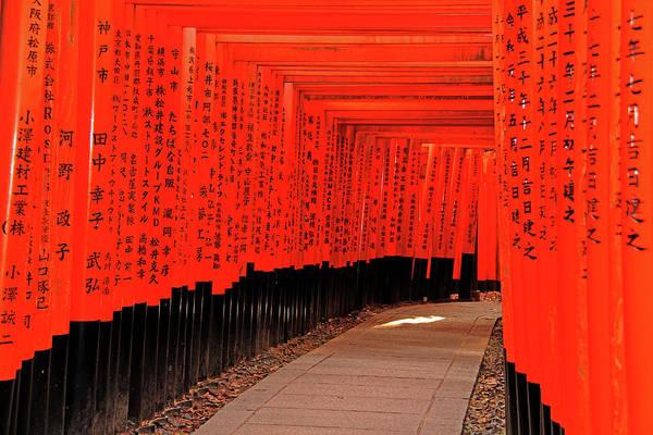 Photograph - Torii Gates - Fushimi Inari-taisha Shrine - Kyoto, Japan by Richard Krebs