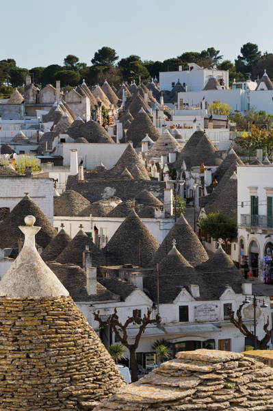 Wall Art - Photograph - Traditional Trulli Houses In Alberobello by Martin Child