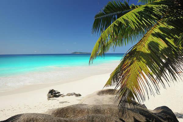 Wall Art - Photograph - Tropical Beach by Cornelia Doerr