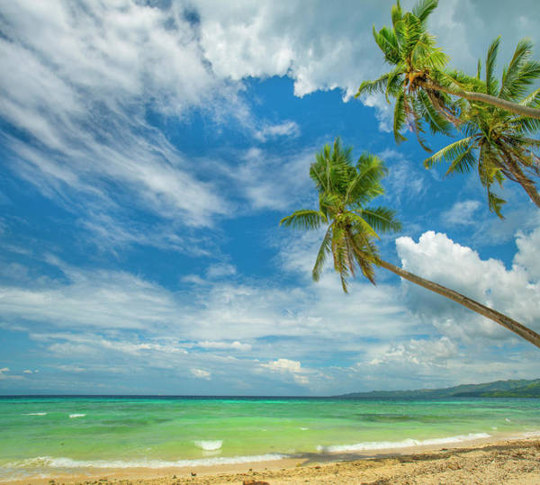 Photograph - Tropical Beach, Siquijor Island by Tim Fitzharris