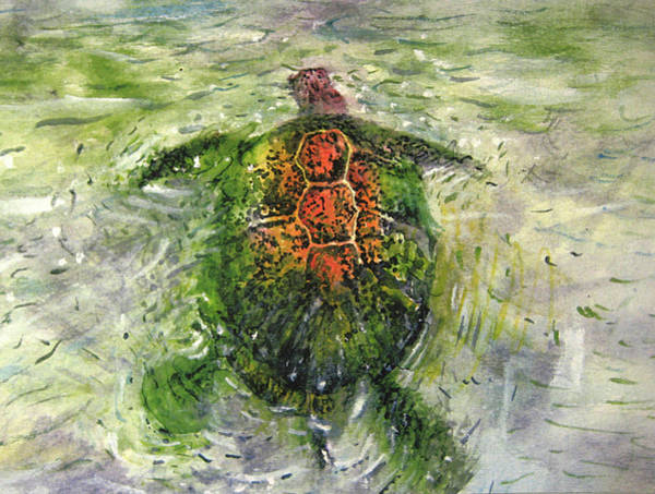 Painting - Turtle by Jeremy Robinson