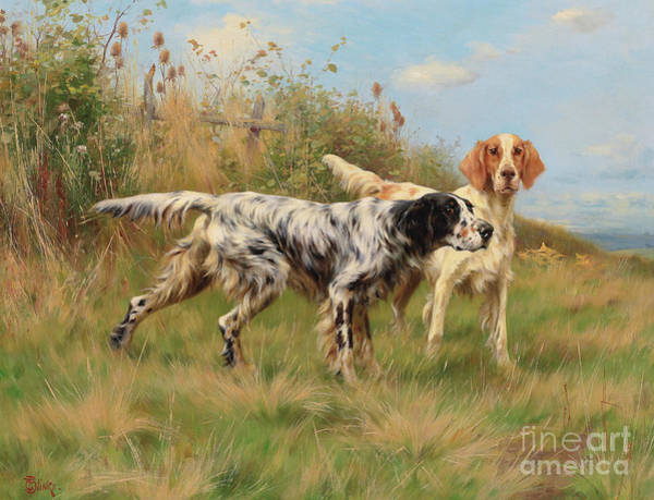 Wall Art - Painting - Two English Setters  by Thomas Blinks