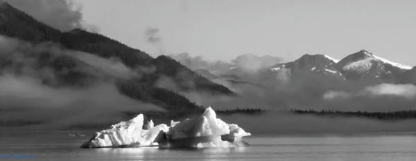 Photograph - Two Icebergs In The Mist -tracy Arm, Ak by Rich Ackerman