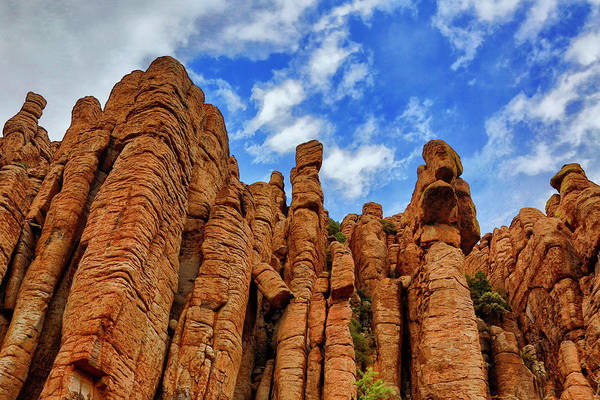 Wall Art - Photograph - Usa, Arizona Organ Pipe Formation by Jaynes Gallery
