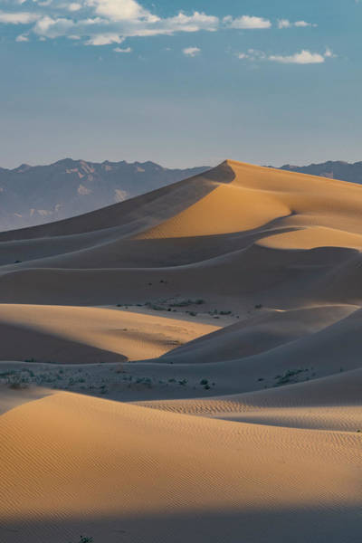 Wall Art - Photograph - Usa, California Windblown Sand Dunes by Judith Zimmerman