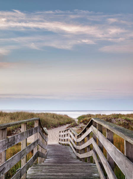 Wall Art - Photograph - Usa, Massachusetts, Cape Cod, Chatham by Ann Collins