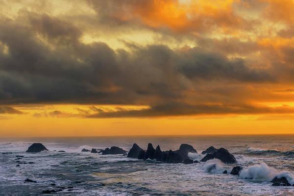 Wall Art - Photograph - Usa, Oregon, Seal Rock Beach by Jaynes Gallery