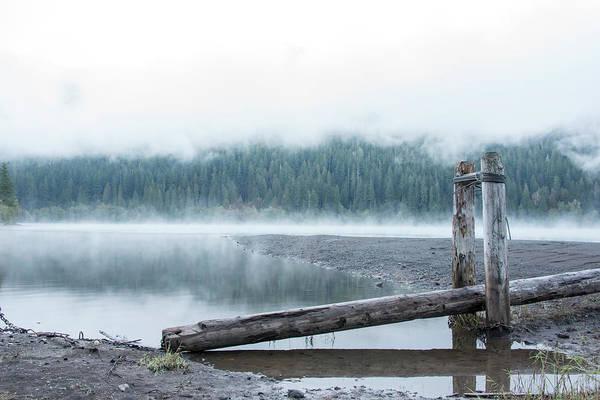 Wall Art - Photograph - Usa, Washington State, Mt by Trish Drury