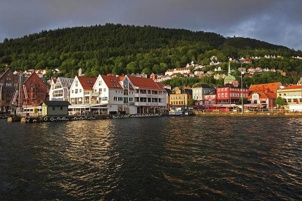 Quayside Photograph - Vagen Harbor And Historical Bryggen by David Epperson