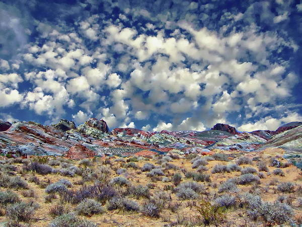 Photograph - Valley Of Fire by Anthony Dezenzio