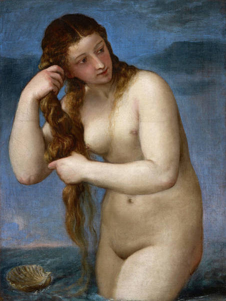 Titian Painting - Venus Anadyomene by Titian