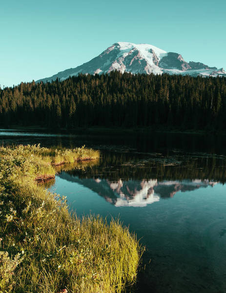 View Of Mount Rainier From Reflection Art Print