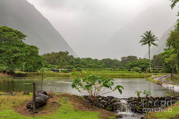 Photograph - Waipio Valley by Jim West