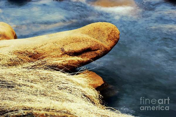 Wall Art - Photograph - Watching Water by Jeff Swan