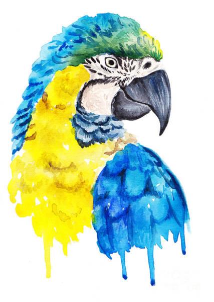 Wildlife Digital Art - Watercolor Parrot Portrait by Maria Sem