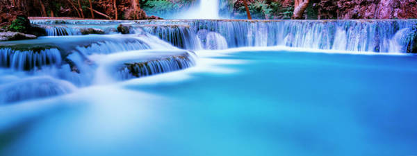 Wall Art - Photograph - Waterfall In A Forest, Mooney Falls by Panoramic Images