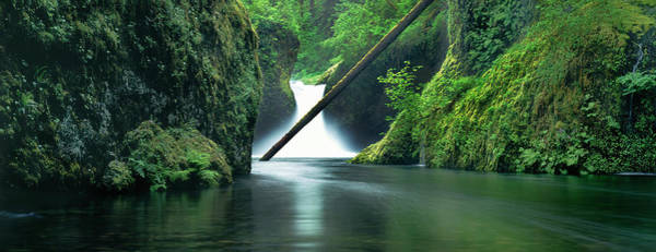 Wall Art - Photograph - Waterfall In A Forest, Punch Bowl by Panoramic Images